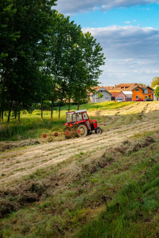 workman, tractor, hay, haying, agriculture, rural, tool, farm, machine, field