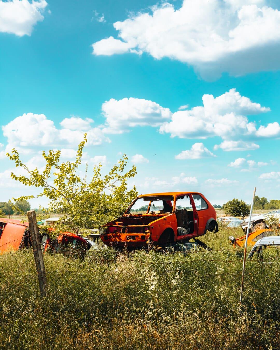 Autos, verlassen, alt, Müll, Junk-e-, Abfälle, Schrottplatz, Gras, Auto, Fahrzeug