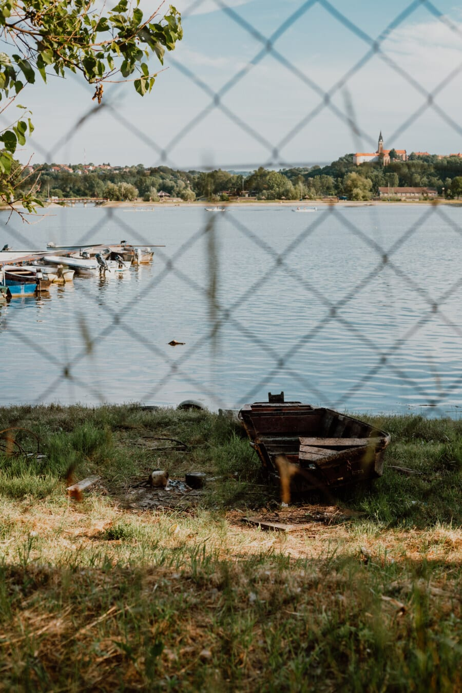 bateau, abandonné, en bois, eau, à l'extérieur, plage, nature, arbre, paysage, herbe
