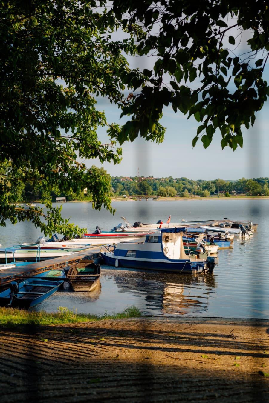 bateau de rivière, bateaux, port, canal, bateau, eau, rivière, Lac, réflexion, arbre