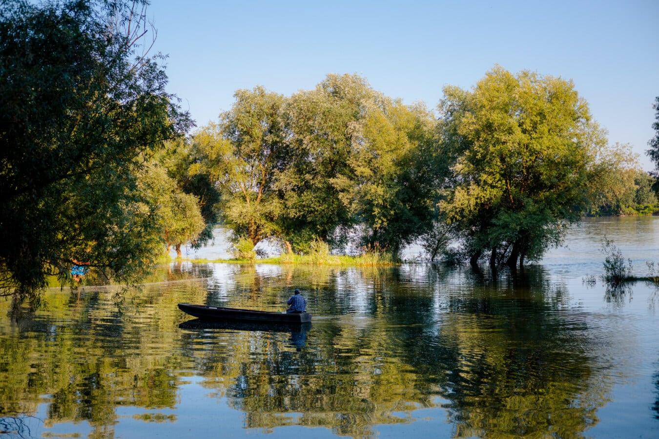 Paddel, Flussschiff, Mann, Aue, Stock, Flussufer, Frühling, Fluss, Wasser, Reflexion