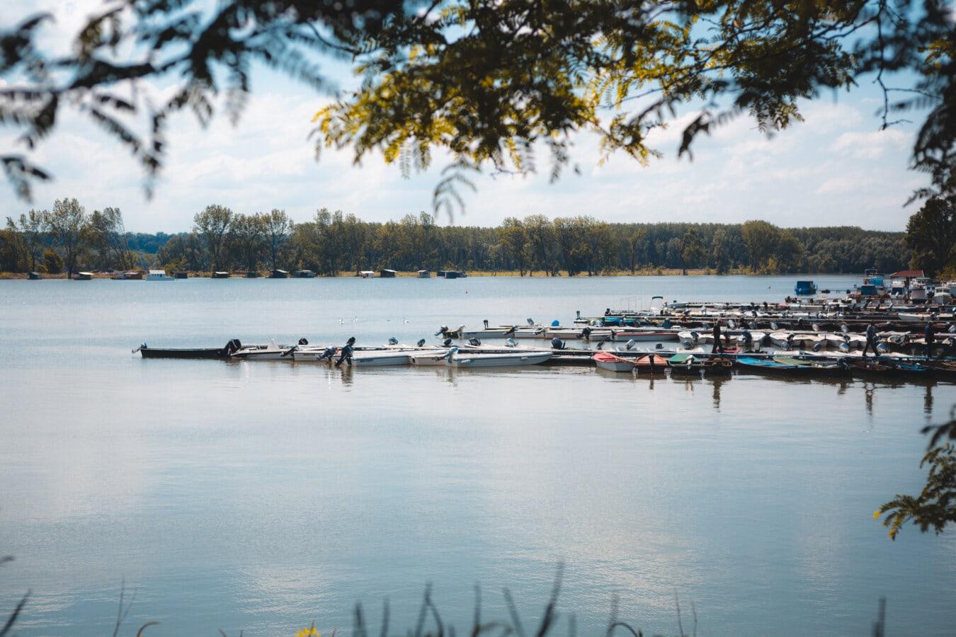 riverbank, dock, river boat, harbor, lake, water, river, reflection, watercraft, outdoors