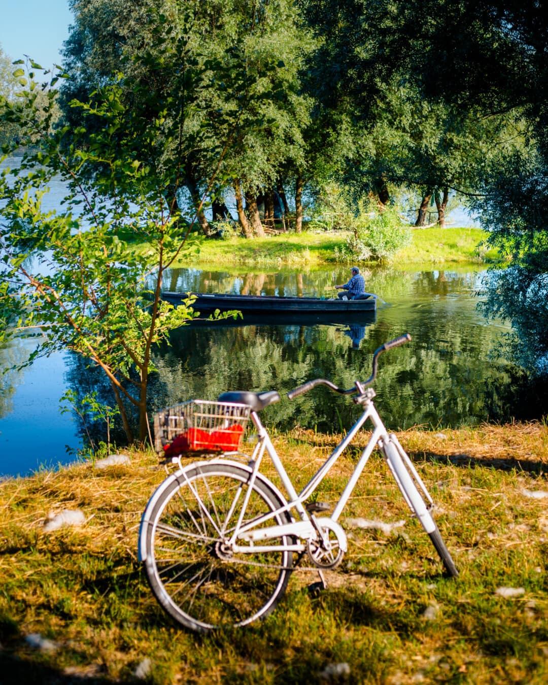 riverbank, river, river boat, man, coast, recreation, bicycle, wheel, mountain bike, cycling