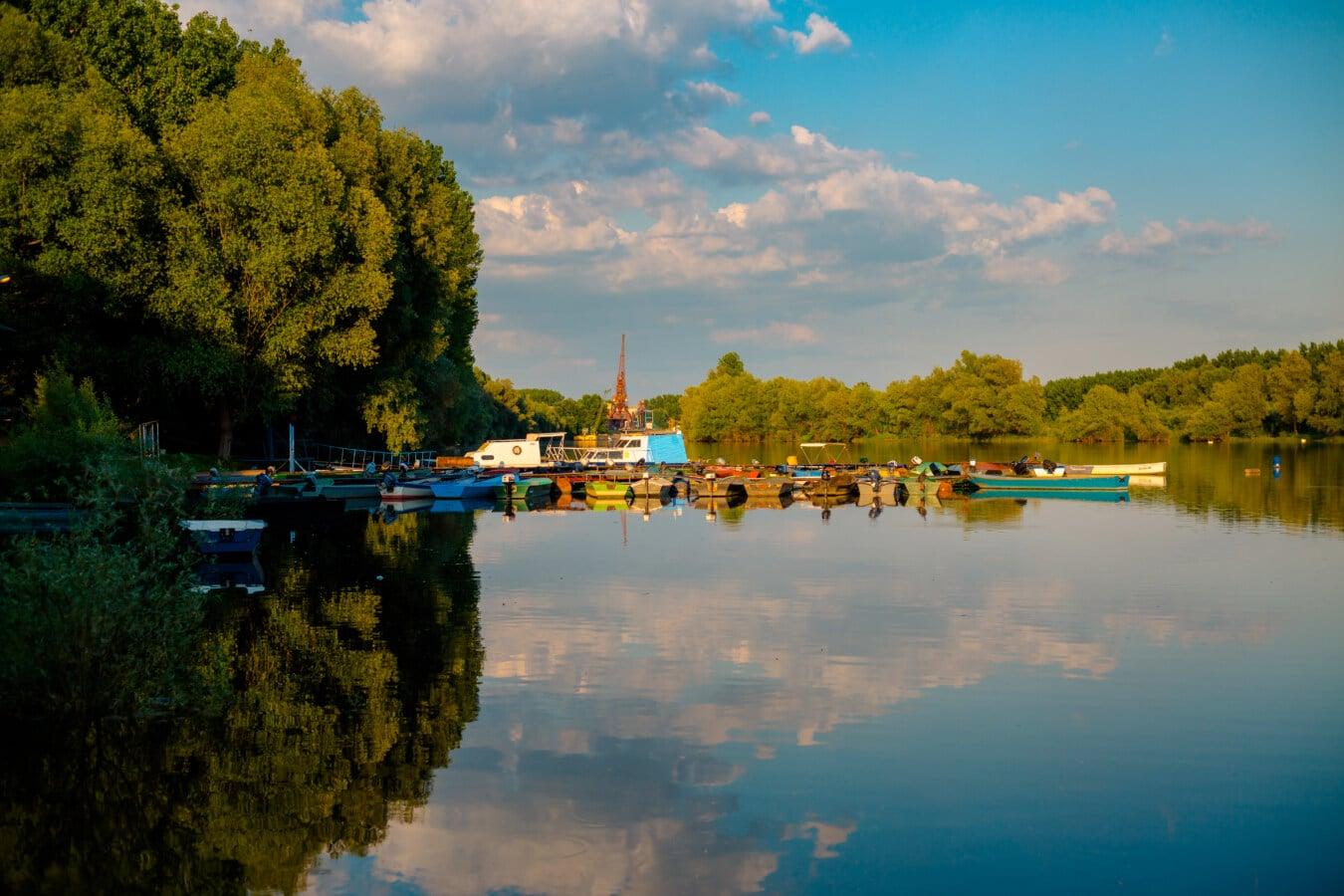 joki, järvi, vesi, Shore, järven puolella, heijastus, maisema, puu, kesällä, luonto