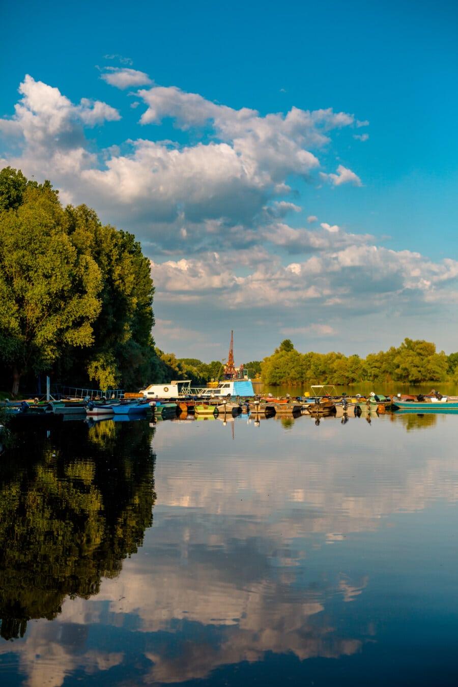 port, station d'accueil, berge, Yacht, bateaux, arbre, eau, paysage, rivière, Lac