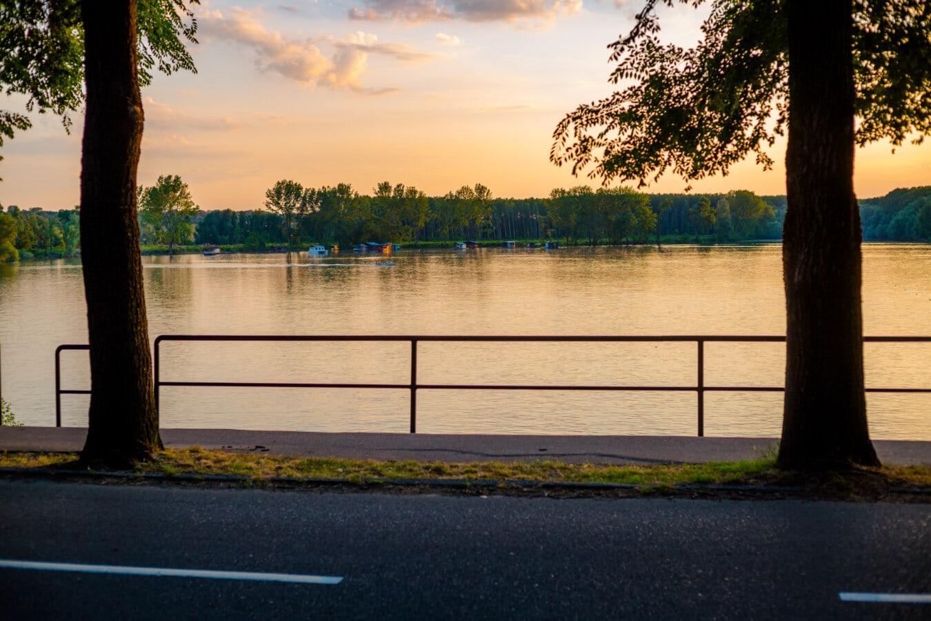 road, asphalt, lakeside, sunrise, twilight, water, tree, shore, lake, sunset