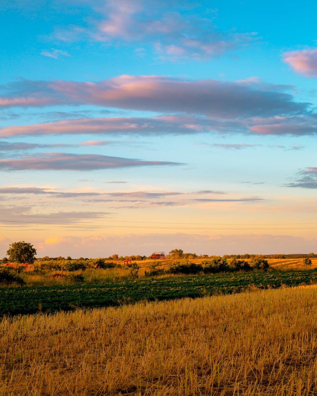 Atmosphäre, Bauernhof, Sonnenuntergang, Landwirtschaft, Landschaft, Feld, Gras, des ländlichen Raums, Natur, Dämmerung