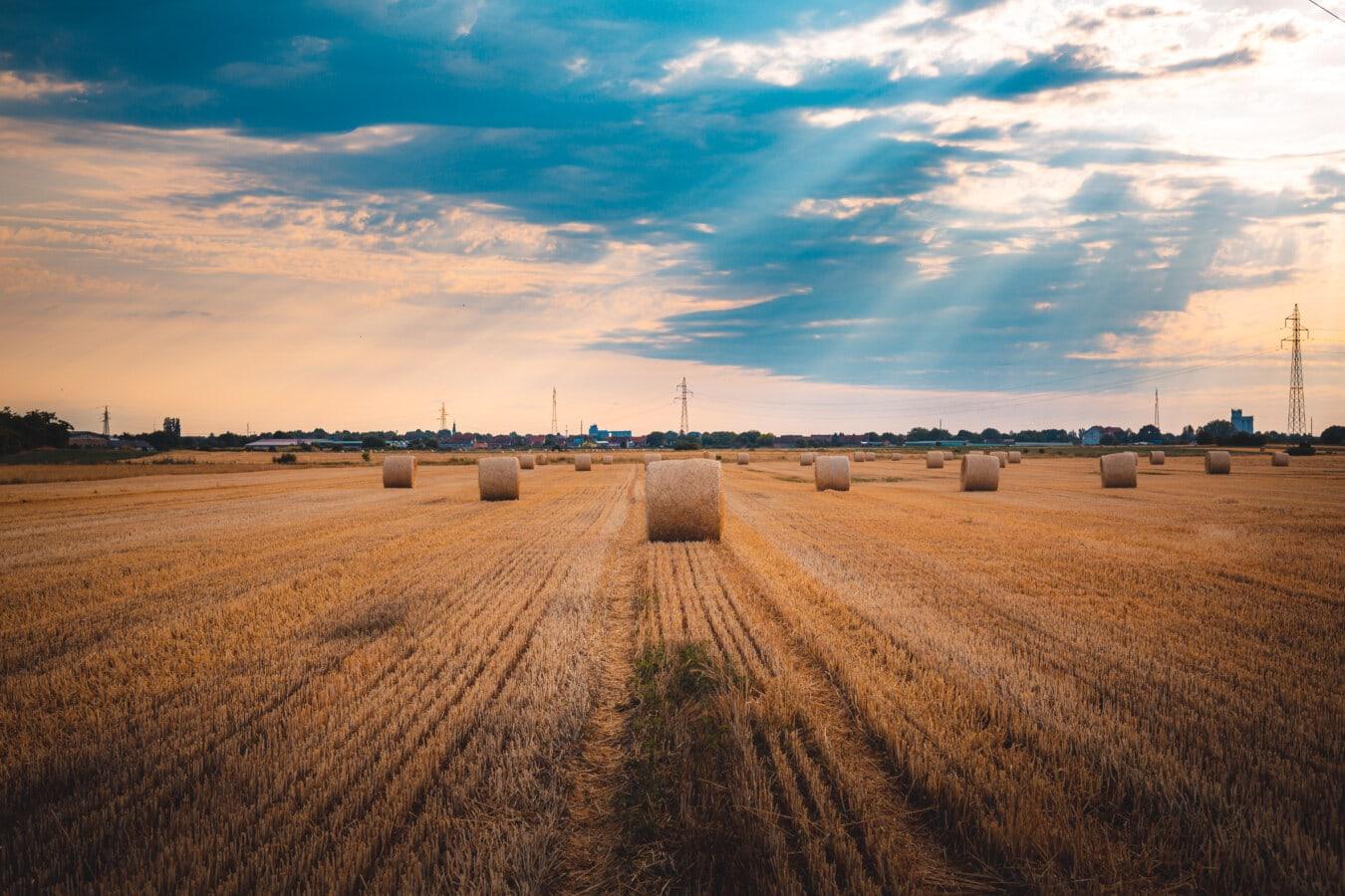 Heuhaufen, Heu-Feld, Sonnenschein, Sonnenstrahlen, sonnig, Harvest, Landwirtschaft, Feld, Landschaft, des ländlichen Raums