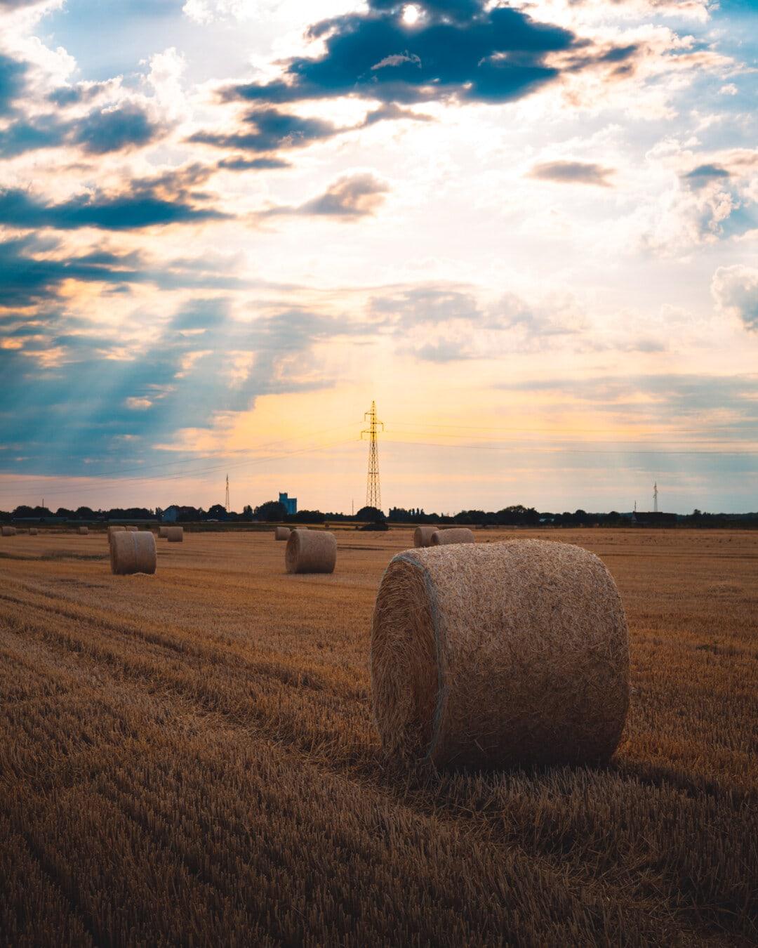 Heuhaufen, Heu-Feld, Hay, Ballen, Sommerzeit, Sonnenuntergang, Sonnenschein, des ländlichen Raums, Landwirtschaft, Stroh