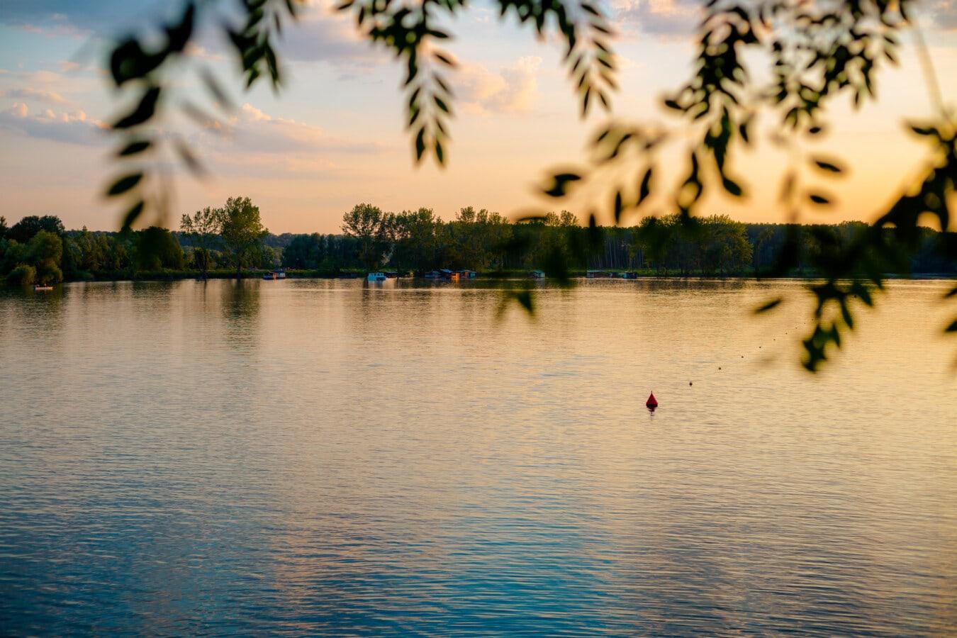 au bord du lac, crépuscule, soirée, horizon, eau, réflexion, soleil, paysage, arbre, coucher de soleil