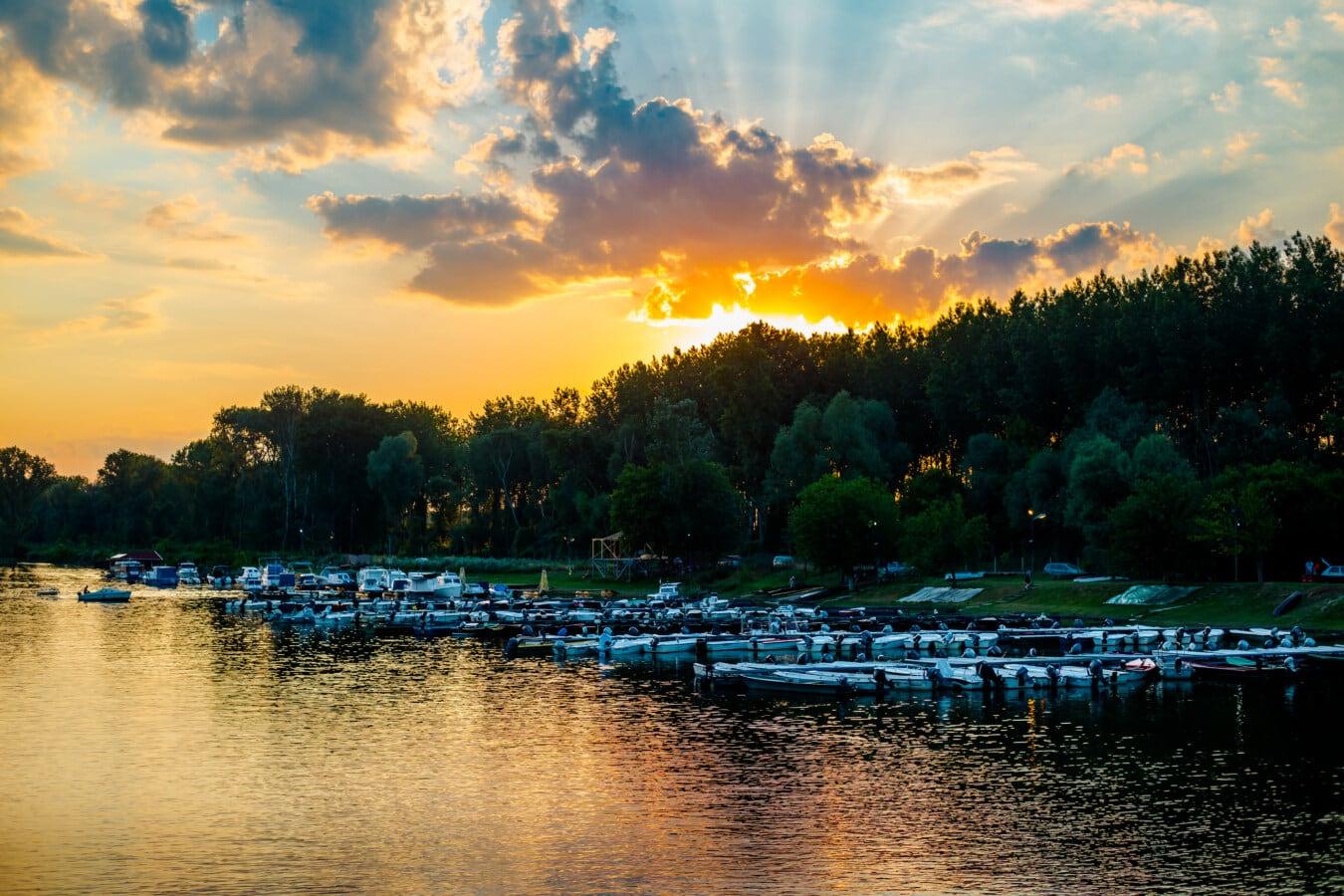 Shore, landskap, sjösidan, sjön, solnedgång, skogen, vatten, reflektion, gryning, floden