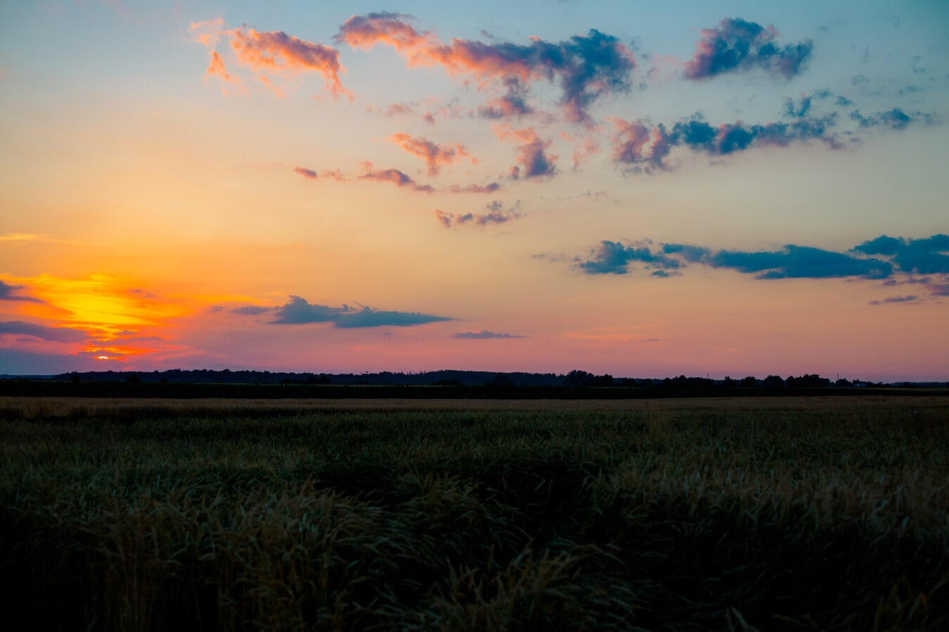 Feld, Dämmerung, Sonnenuntergang, Landwirtschaft, Sonne, Atmosphäre, des ländlichen Raums, Wolke, Dämmerung, Landschaft