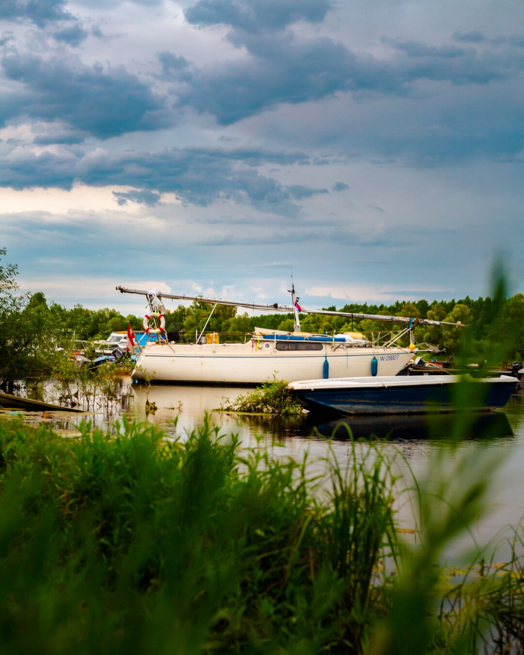 Segeln, Segelboot, Hafen, Marina, Boot, Wasser, Sommer, Seebrücke, Natur, Seashore