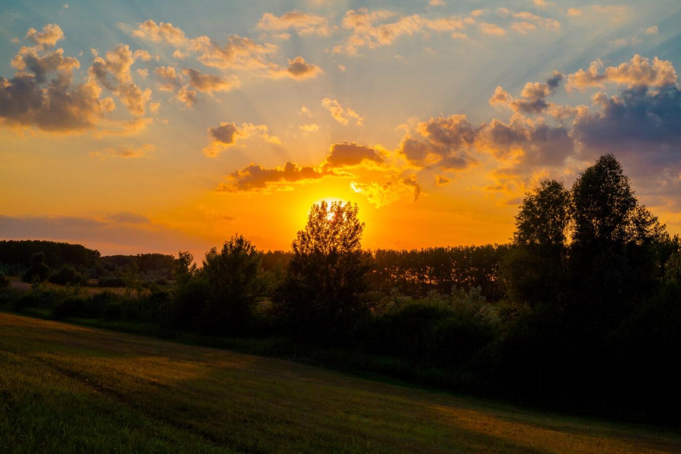 coucher de soleil, jaune orangé, majestueux, taches solaires, paysage, aube, Star, soleil, soirée, beau temps