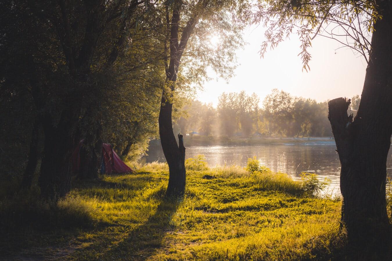Zelt, Camping, Fluss, Flussufer, Sommersaison, Sonnenschein, Atmosphäre, majestätisch, Bäume, Struktur