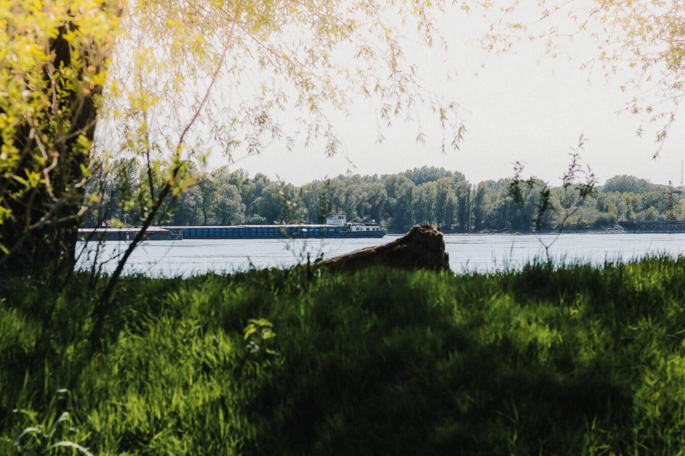 δέντρα, ακροποταμιά, χορτώδους, φορτηγό πλοίο, φορτηγίδα, τοπίο, χλόη, εξοχή, δέντρο, το καλοκαίρι