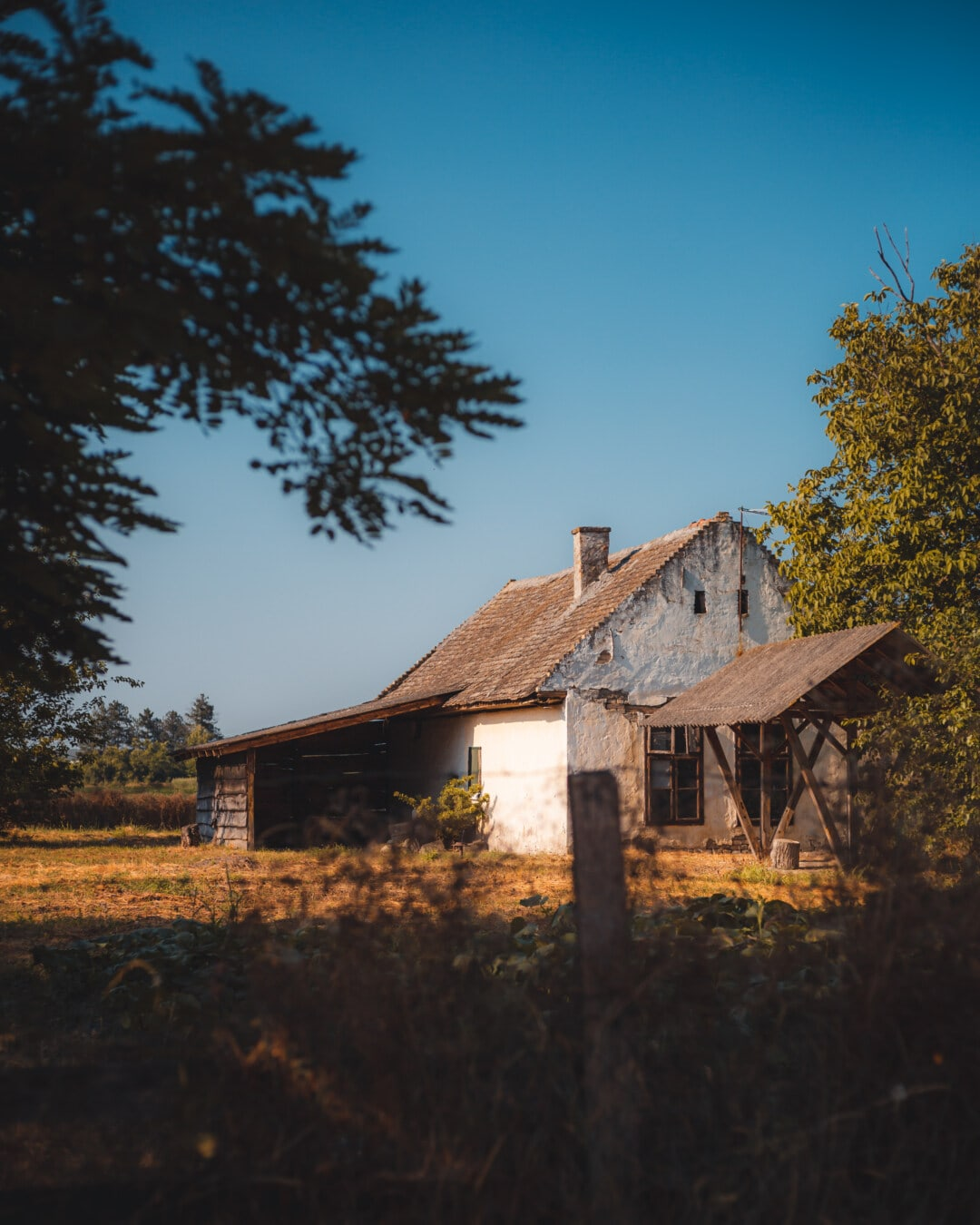 backyard, house, village, old, poverty, rural, decay, abandoned, barn, home