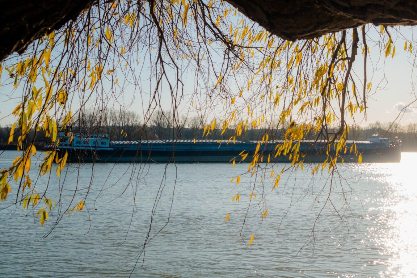 Versand, Lastkahn, Frachtschiff, Geäst, gelbe Blätter, sonnig, Tag, Natur, Wasser, Holz