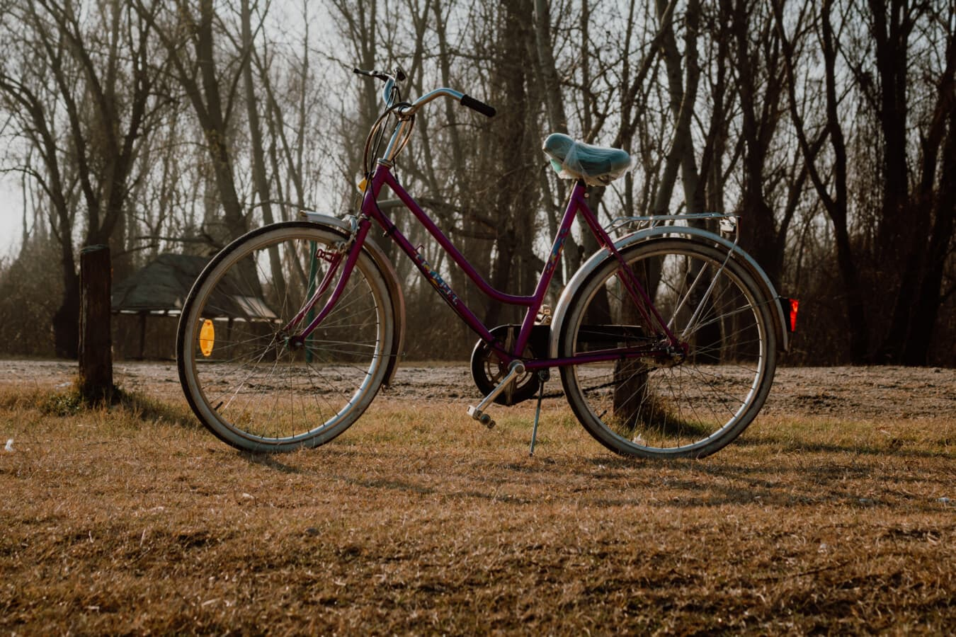 bicycle, classic, old style, cycling, seat, device, cycle, bike, wheel, wood