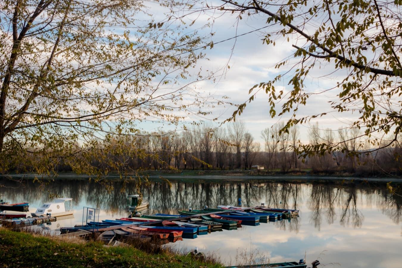 am See, Hafen, am Nachmittag, Atmosphäre, Wasser, Struktur, Wald, See, Reflexion, Landschaft