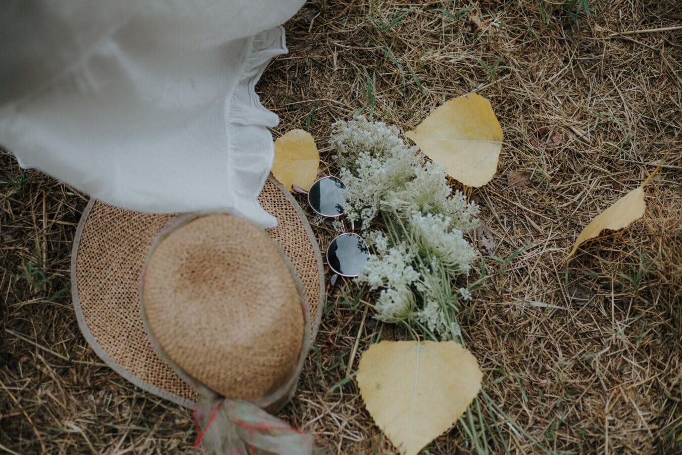 démodé, lunettes de soleil, jute, chapeau, saison de l'automne, herbe, alimentaire, nature, bois, arbre