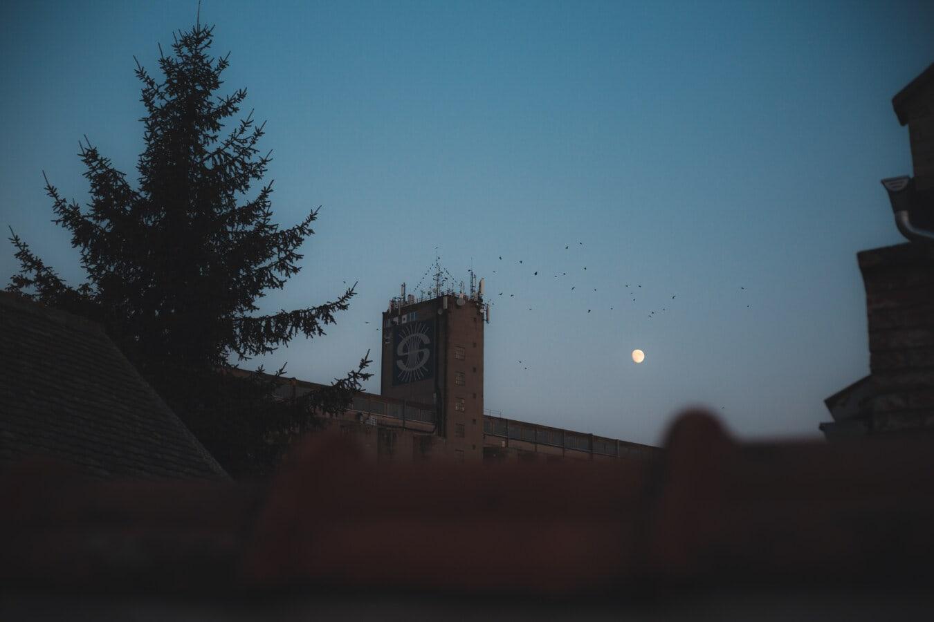 Gebäude, Silo, Dämmerung, 'Nabend, Schatten, Silhouette, Mond, Dämmerung, Architektur, Licht