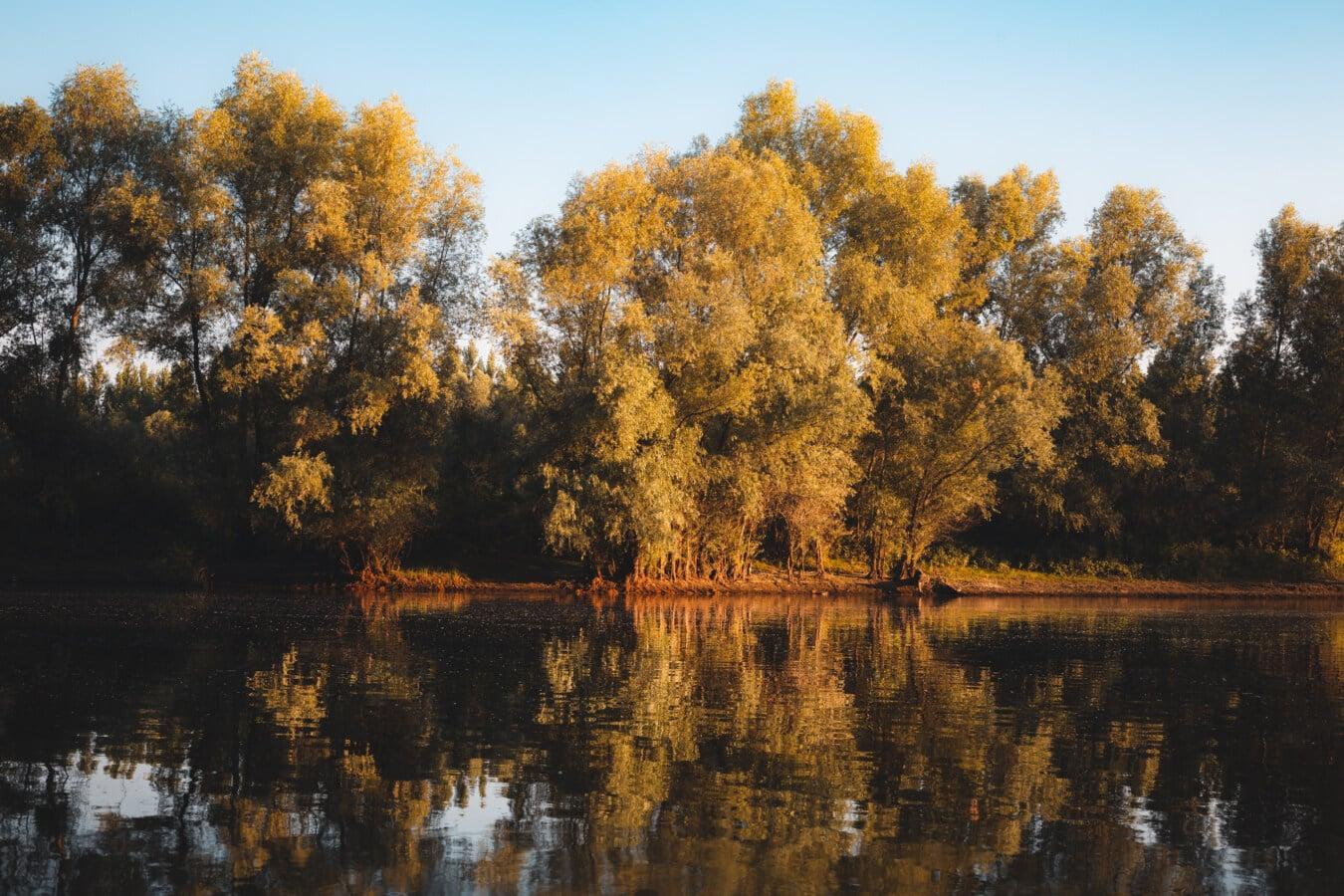 ruhig, am See, Herbstsaison, Wasserstand, Ruhe, See, Wasser, Reflexion, Struktur, Natur