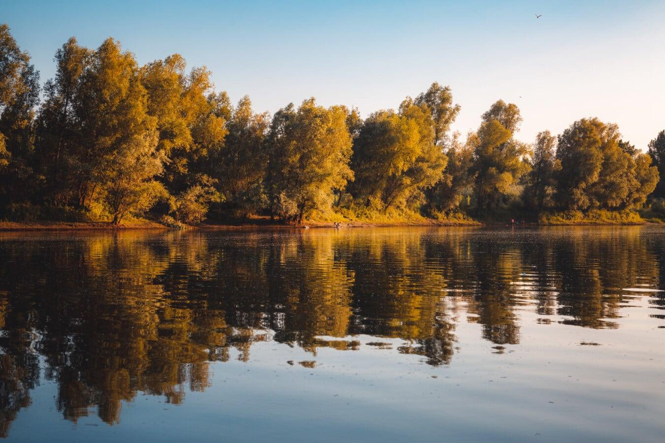 See, Reflexion, Dämmerung, Wasser, Struktur, ruhig, im freien, Fluss, Schönwetter, Blatt
