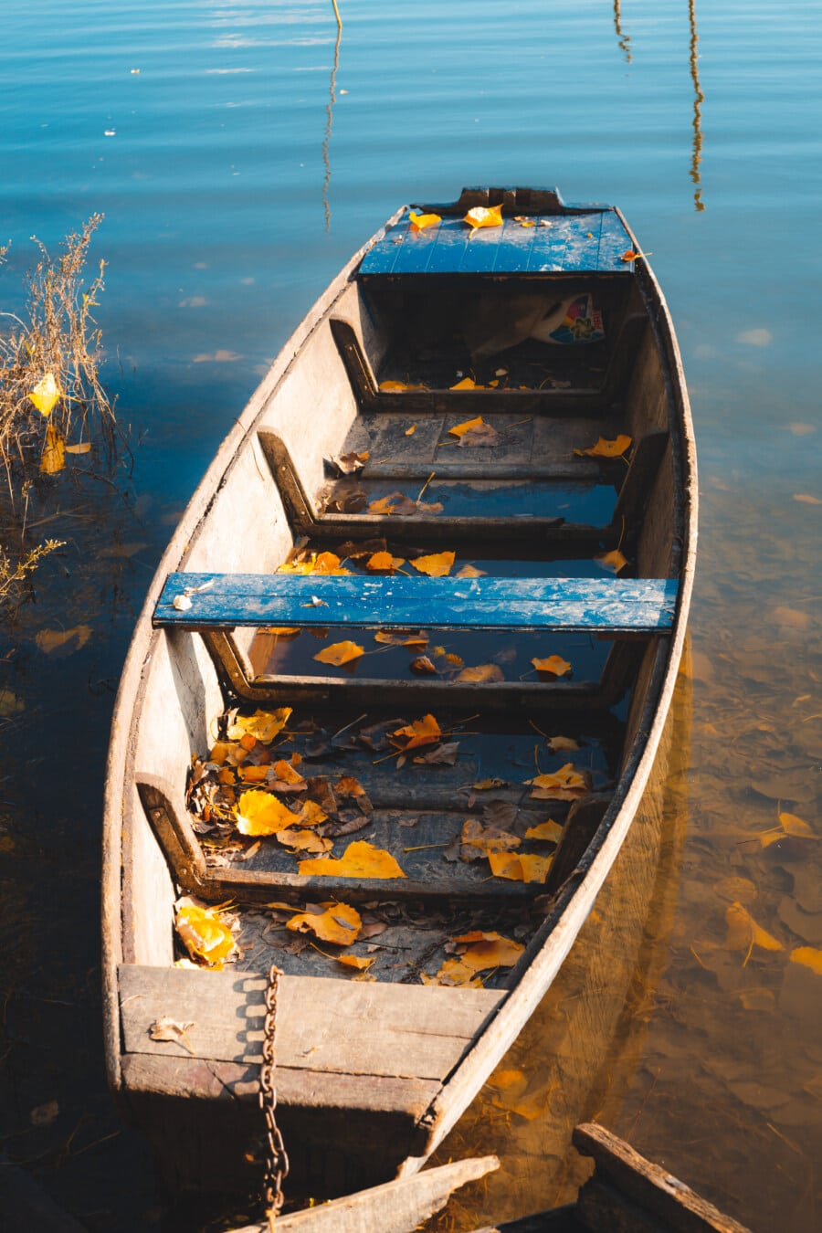 Boot, Herbstsaison, Flussschiff, gelbe Blätter, Wasser, Holz, Wasserfahrzeuge, Sommer, Natur, Angelboot/Fischerboot