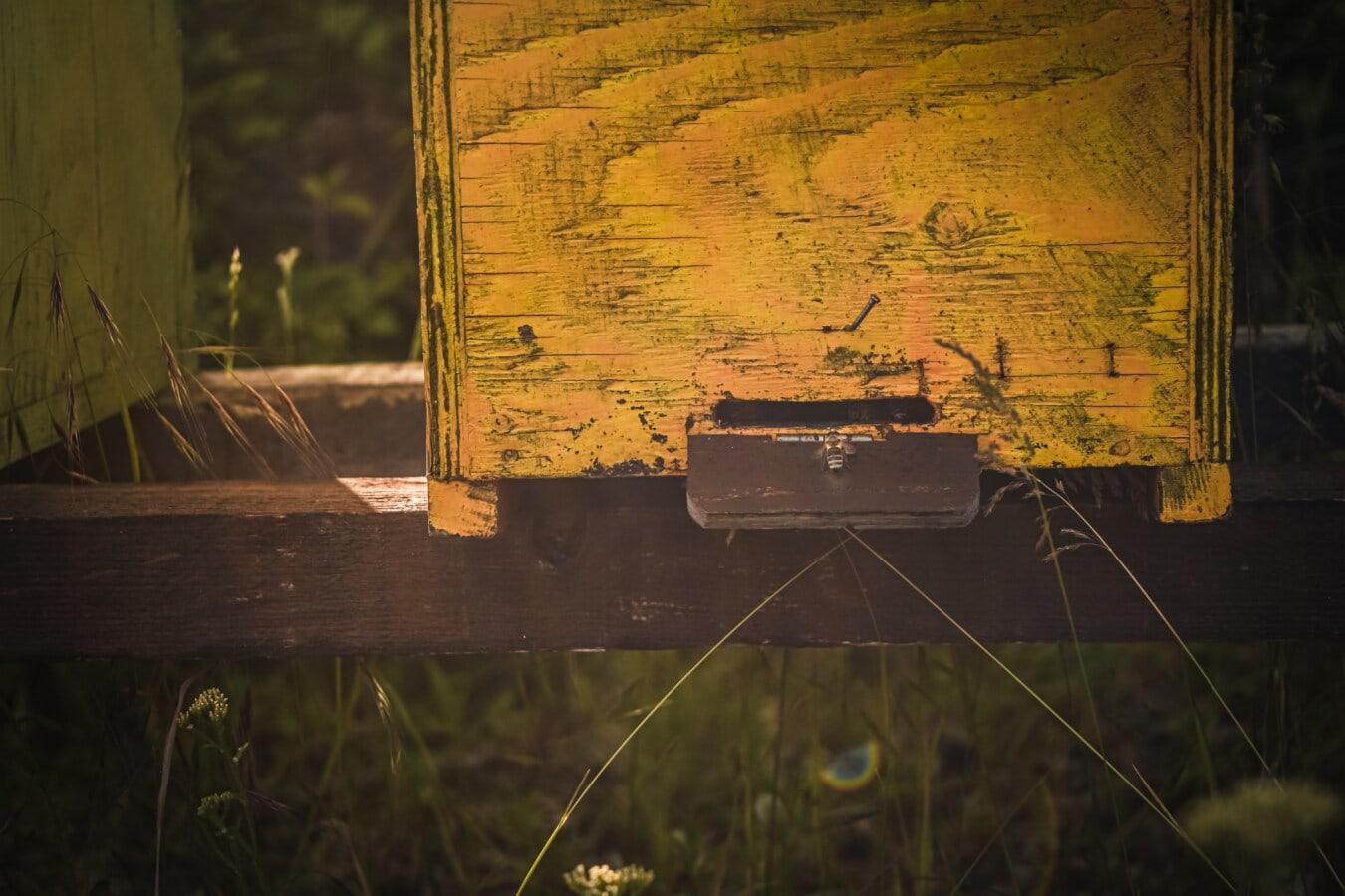 abeille, ruche, nid d'abeille, rural, vintage, bois, vieux, retro, art, antique