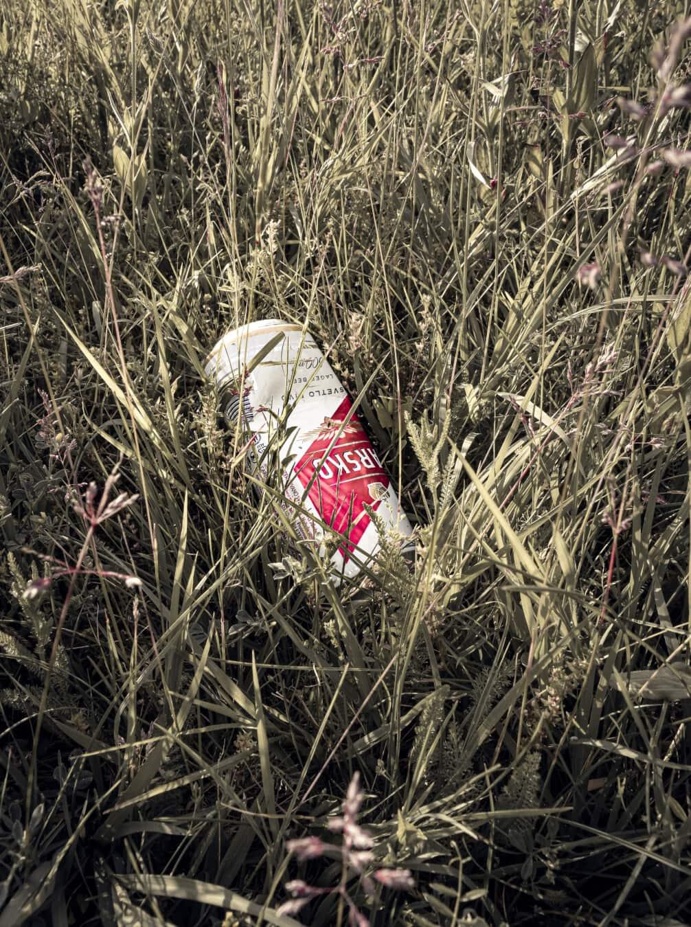 garbage, déchets, vieux, en aluminium, recyclage, herbe, été, à l'extérieur, abandonné, poubelle