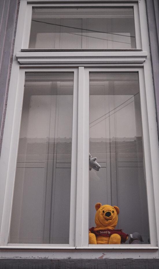 Glas, Frame, Fenster, alt, Teddybär Spielzeug, Spielzeug, Architektur, drinnen, Holz, Interieur-design