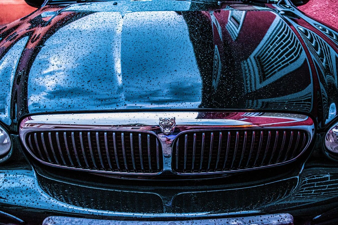 Auto, Jaguar, nass, Regen, Chrom, Stoßstange, Scheinwerfer, Zeichen, Symbol, metallische