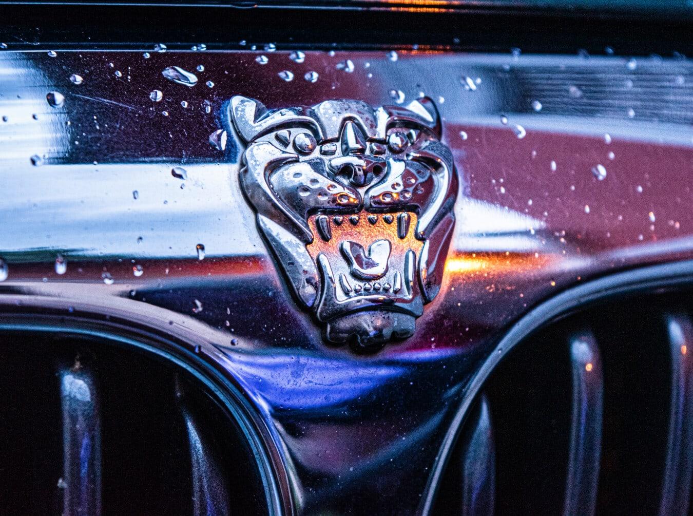 sign, symbol, jaguar, car, chrome, shining, glossy, detail, vehicle, grille