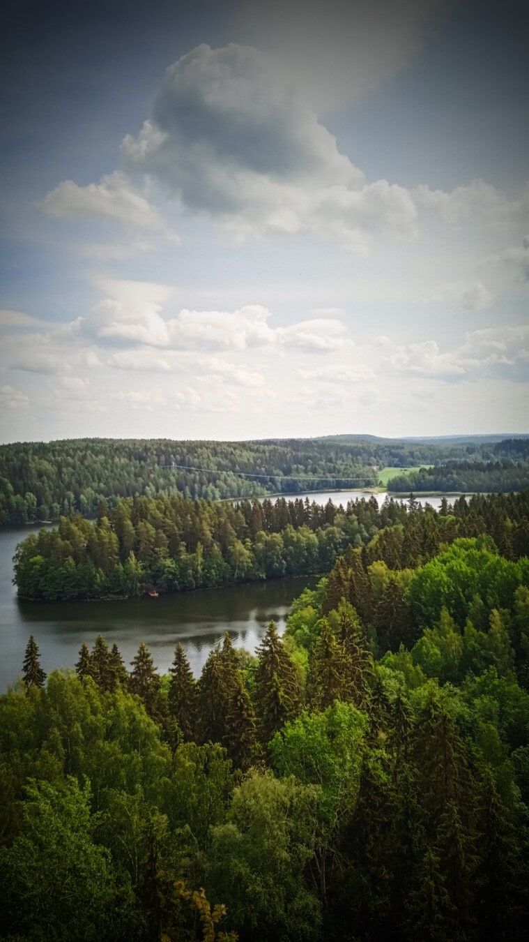 river, panoramic, riverbank, majestic, landscape, shore, nature, channel, tree, wood