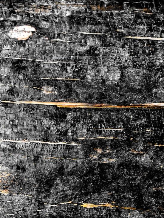 dřevo, vypalování, textura, jasan, černá, grunge, drsné, špinavý, abstrakt, tmavý
