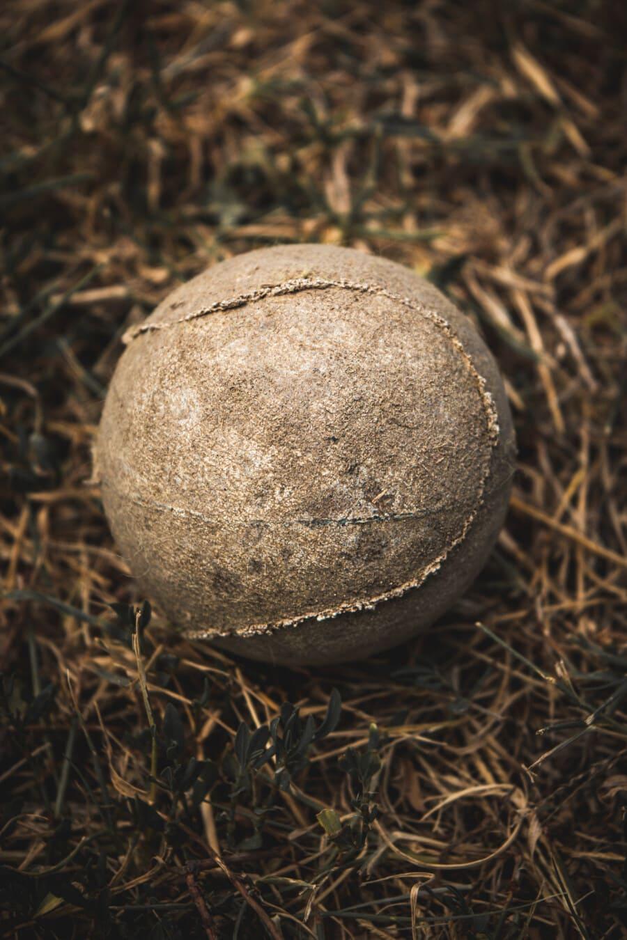 Ball, remise en conformité, carie, tennis, vintage, sol, herbe, sport, jeu, sol