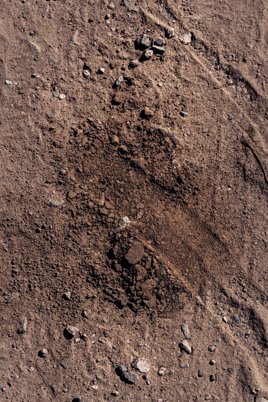 Terre, sol, sol, surface, poussière, texture, modèle, Pierre, Rough, sale