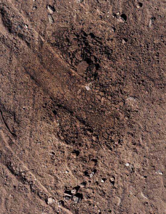 estación seca, suelo, tierra, cantos rodados, polvo, marrón, textura, material, áspero, sucio