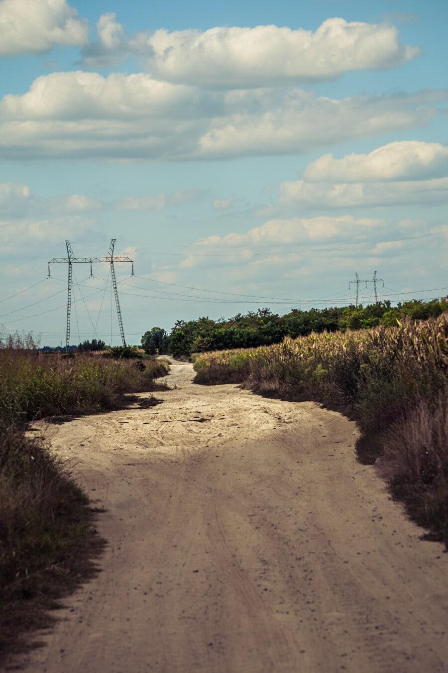 rural, Agriculture, Itinéraire, paysage, nature, herbe, lumière, environnement, domaine, à l'extérieur