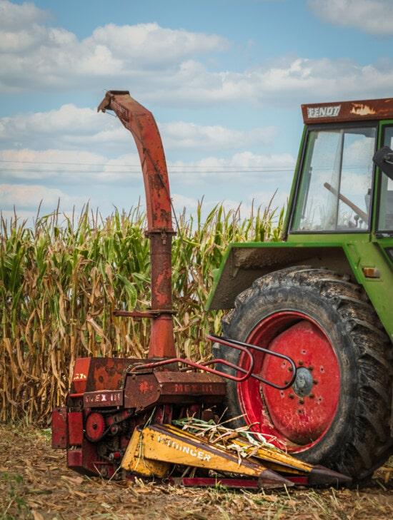 composant de collecte, champ de maïs, maïs, harvest, véhicule, tracteur, Agriculture, unité, machines, machine