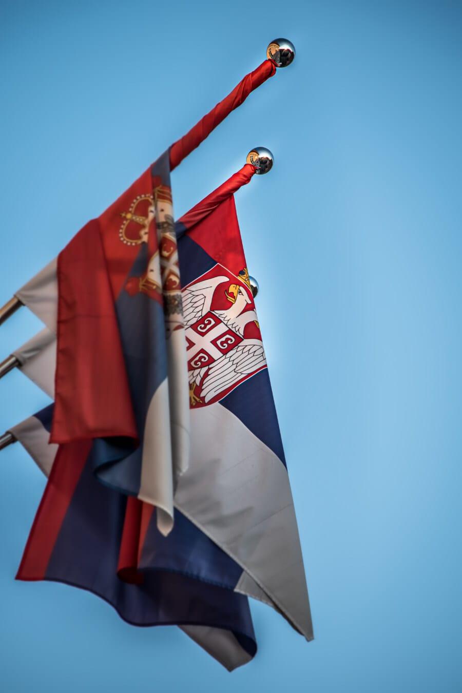 Serbie, République démocratique, démocratie, Aigle à tête blanche, symbole, emblème, patrimoine, héraldique, drapeau, vent