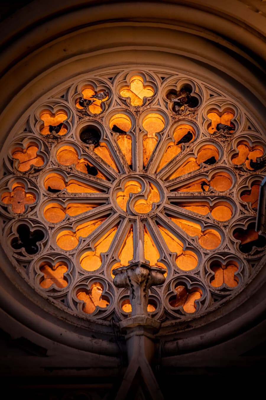 baroque, window, round, architectural style, church, unique, fine arts, decorative, abstract, framework