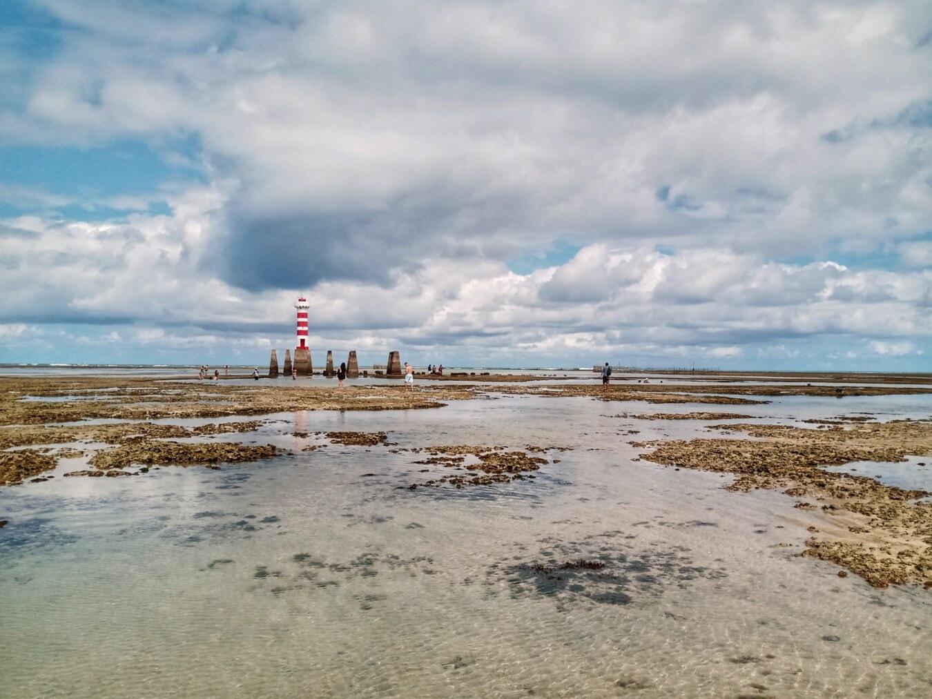 Koralle, bei Ebbe, Beacon-Dienst, Strand, direkt am Strand, Meer, Wasser, Ozean, Küste, Natur