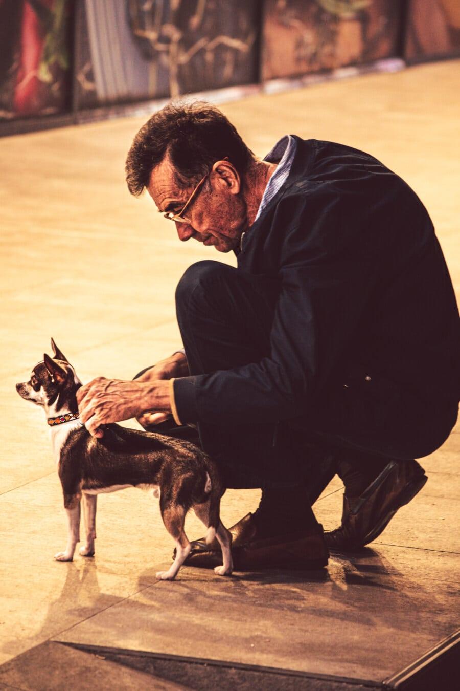 elderly, man, businessman, pinscher, pet, dog, canine, portrait, street, animal