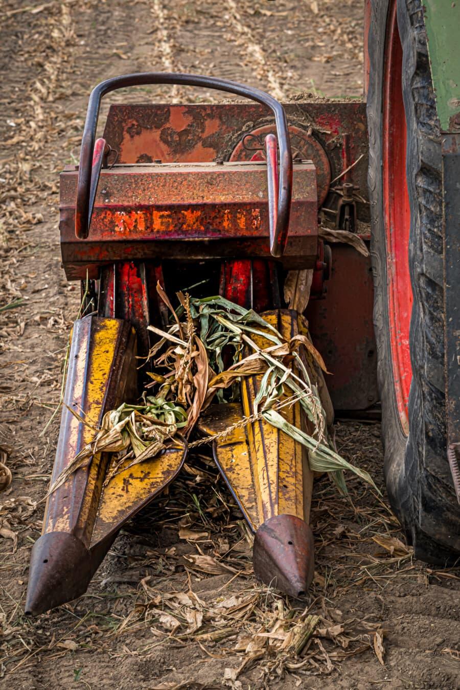 Harvest, Traktor, Harvester, Kornfeld, Mais, Reifen, industrielle, Landwirtschaft, Maschine, Maschinen