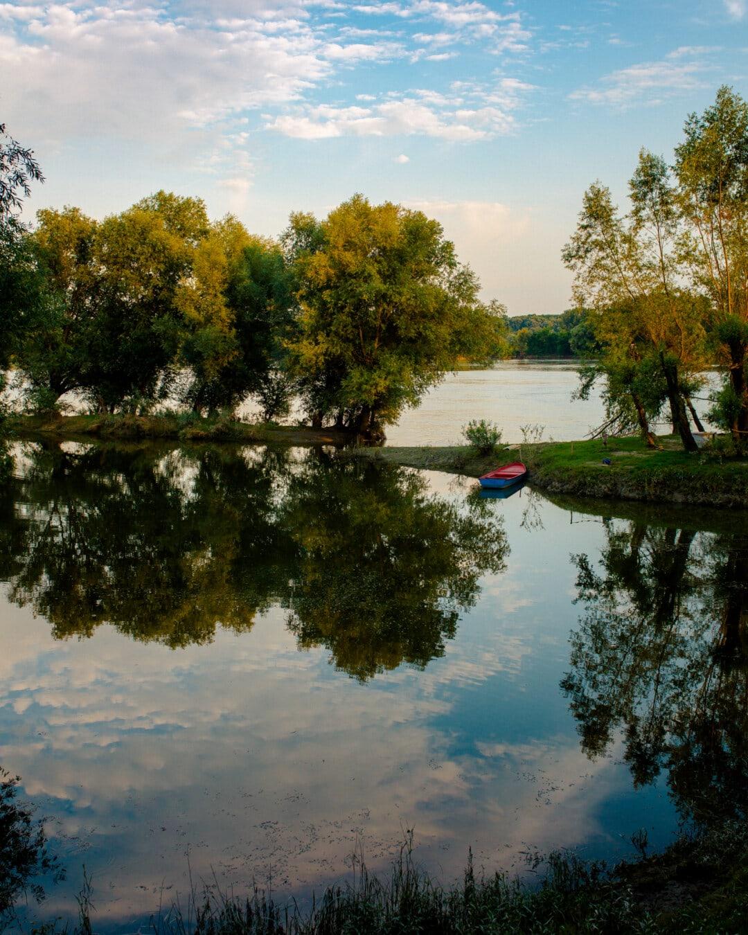 Lac, calme, eau, arbre, paysage, réflexion, nature, été, à l'extérieur, beau temps