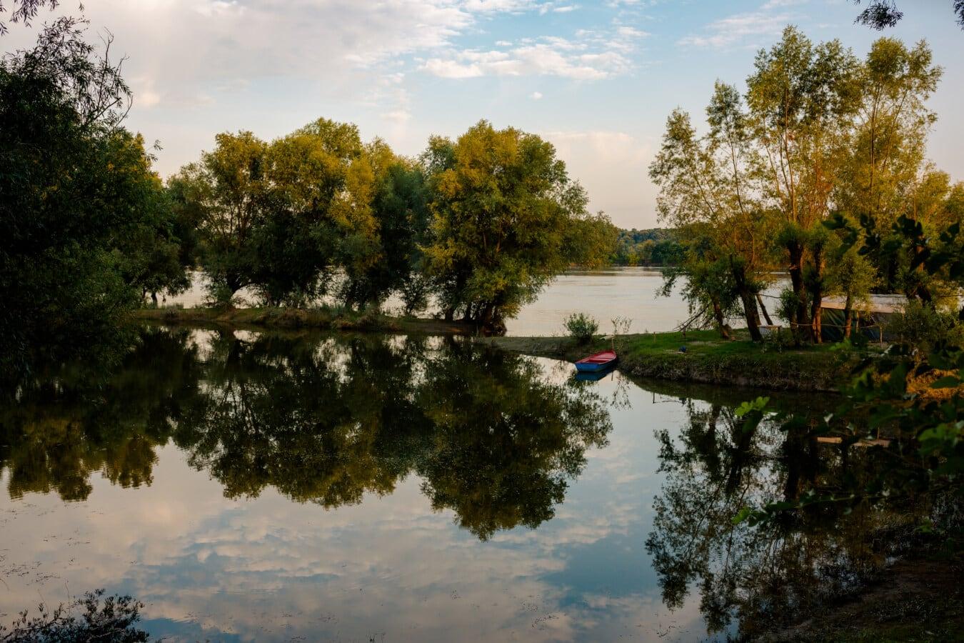 majestueux, au bord du lac, calme, Camping, rive, arbre, paysage, eau, Lac, nature