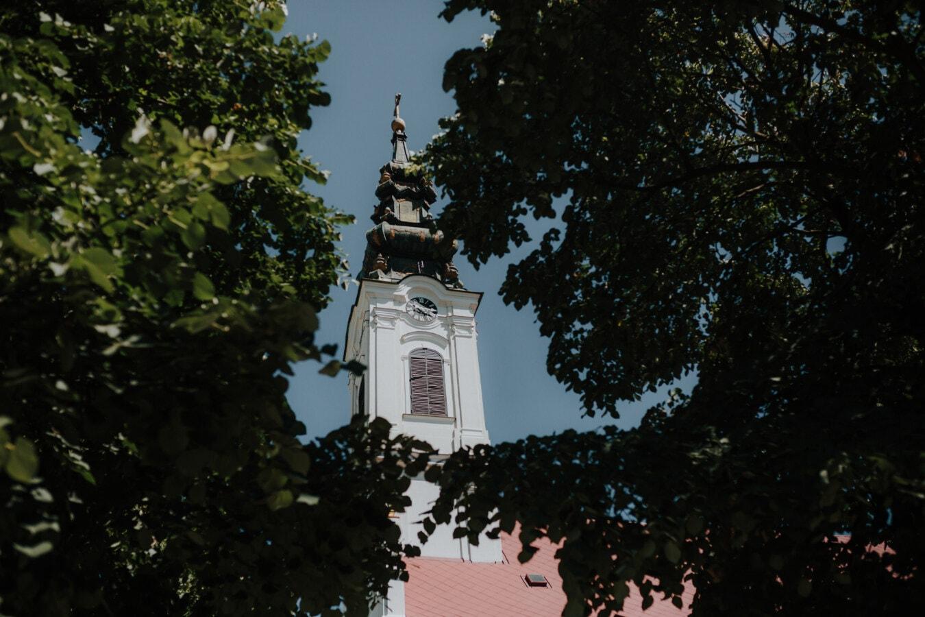 orthodoxe, église, steeple, arbres, branches, religion, architecture, arbre, tour, Ville