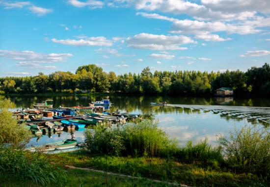 Nationalpark, Atmosphäre, Ruhe, am See, Schönwetter, Frühling, Landschaft, See, Wasser, Fluss